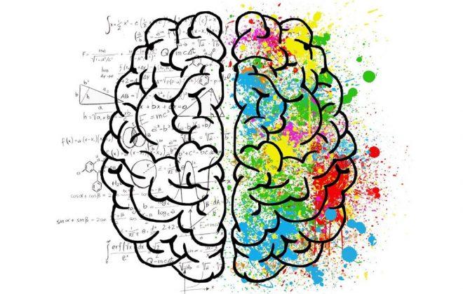 El Color: Percepción e Interpretación de los colores